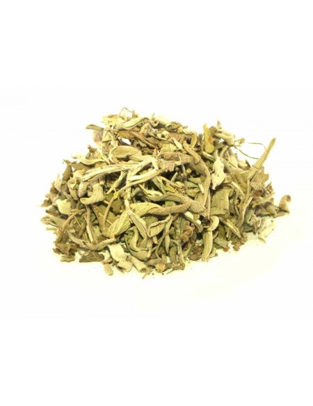 Infusion de Sauge Officinale