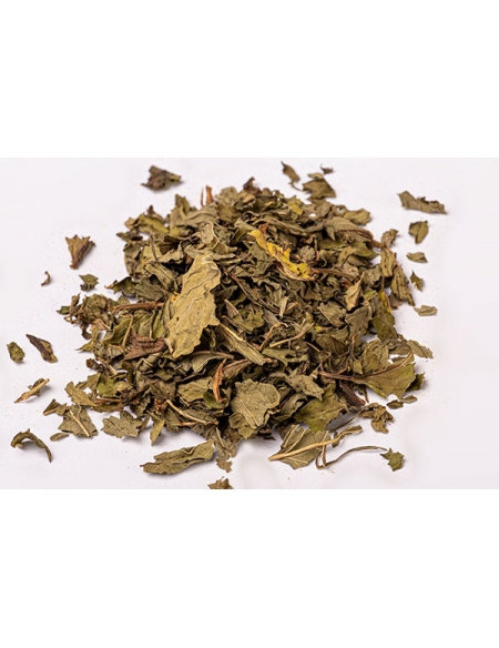 Mint dried leaves